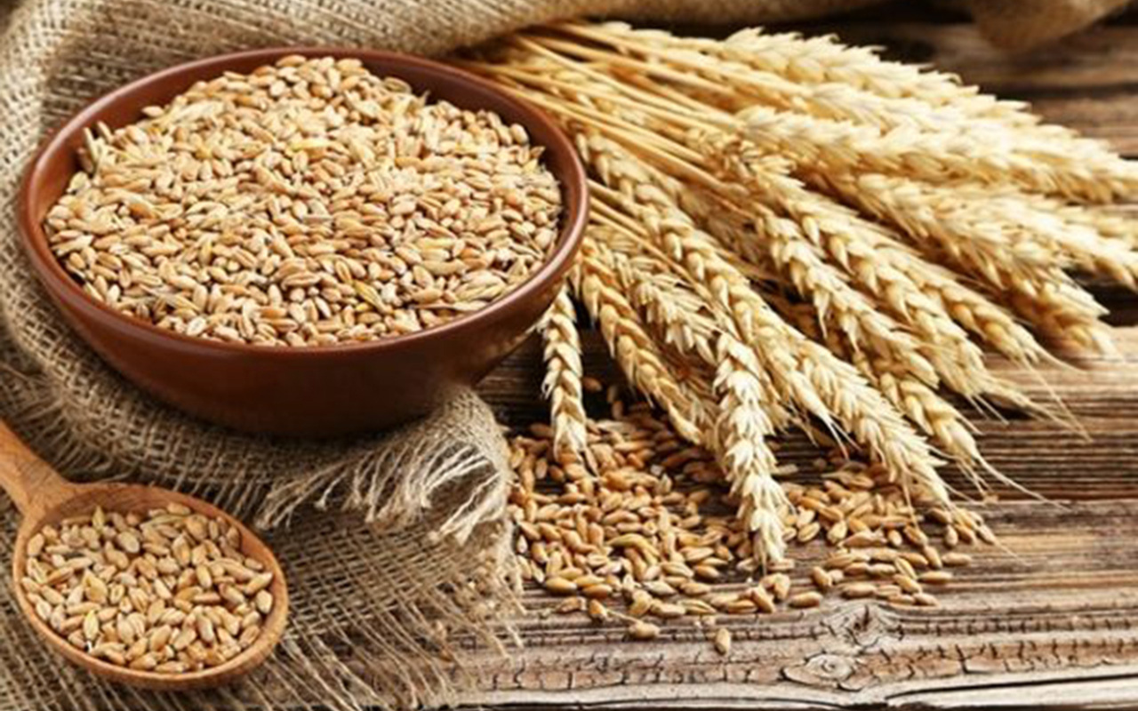 Buğday, arpa, nohut, mercimek ve mısırda gümrük vergisi sıfırlandı