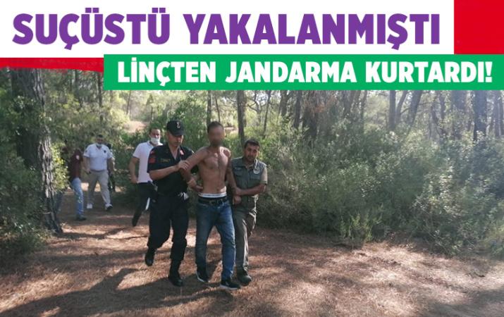 Antalya Manavgat'ta orman yangını çıkarmaya çalışan şüpheliyi linçten jandarma kurtardı