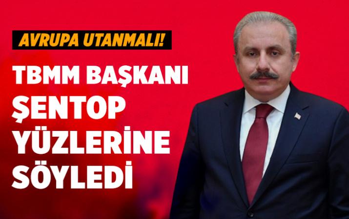TBMM Başkanı Mustafa Şentop yüzlerine söyledi Avrupa utanmalı