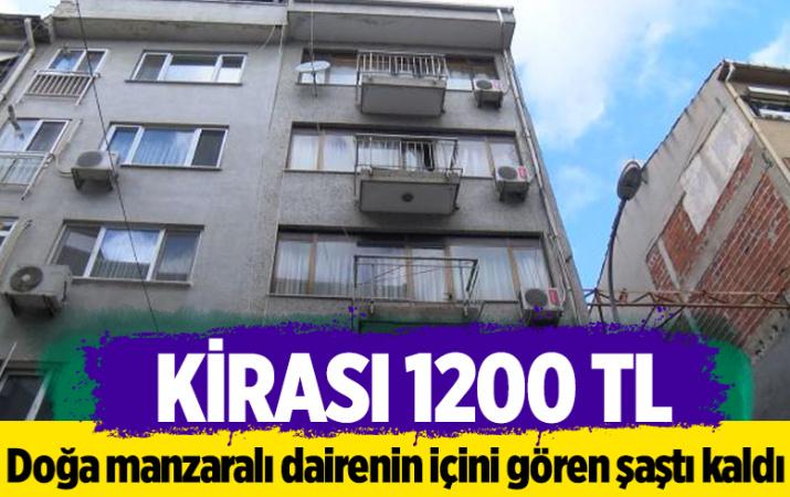 Kirası 1200 TL! İstanbul'da doğa manzaralı dairenin içini gören şaşkına döndü: Söven arkadaşlarımız oldu